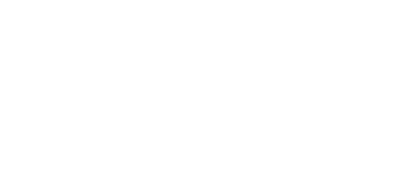 Brooklyn Bred Bred with a Brooklyn Accent